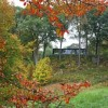 Glass House Fall Exhibitions and Programs