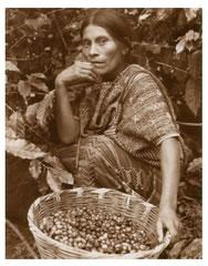 Craft and Folk Art Museum Presents Daniel Lorenzetti, Linda Rice Lorenzetti The Birth of Coffee