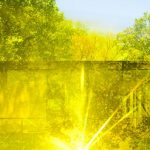 Minneapolis Institute of Arts Presents New Pictures 3: James Welling, Glass House