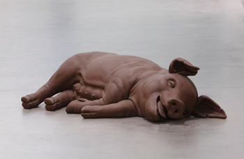 Magasin 3 Stockholm Konsthall Presents INVESTIGATIONS OF A DOG Works from the FACE collections