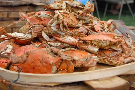 Steamed Crabs, Bird Dog and the Road Kings at CBMM August 14