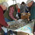 Chesapeake Bay Maritime Museum Hosts OysterFest on November 5 in St. Michaels