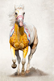 """National Museum of the American Indian Announces """"A Song for the Horse Nation"""" Exhibition"""