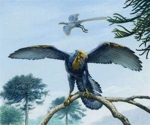 National Museum Cardiff Presents Archaeopteryx Exhibition