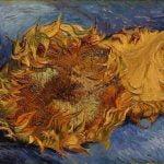 Philadelphia Museum of Art announces Van Gogh Up Close