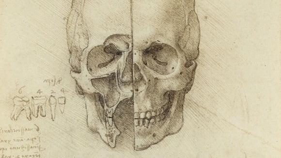 Leonardo Da Vinci Works