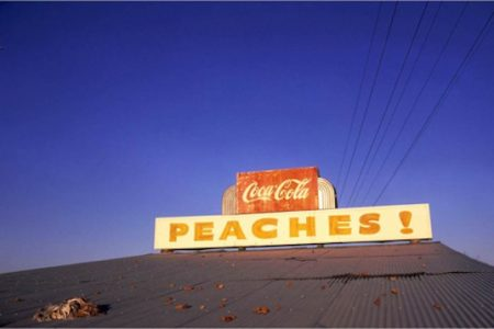 Metropolitan Museum opens At War with the Obvious Photographs by William Eggleston