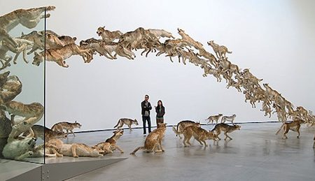 Brisbane Gallery of Modern Art announces Cai Guo-Qiang exhibition