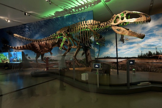 Ultimate Dinosaurs Take Over Cincinnati Museum Center June