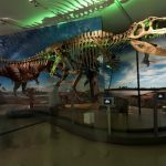 Tickets on sale today for Ultimate Dinosaurs: Giants from Gondwana