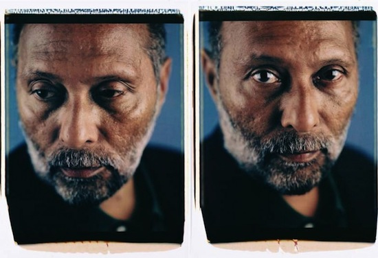 Bey-Stuart Hall, 1998, Internal dye diffusion transfer prints, 30x 44 in, Courtesy of the artist