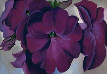 Georgia O'Keeffe, American (1887-1986), Petunias, 1925, oil on board, 18 x 30 in., Fine Arts Museums of San Francisco, California, Museum purchase, gift of the M. H. de Young Family, 1990.55. © Georgia O'Keeffe Museum