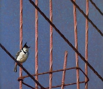 Knoxville McClung Museum presents Birds in Art exhibition