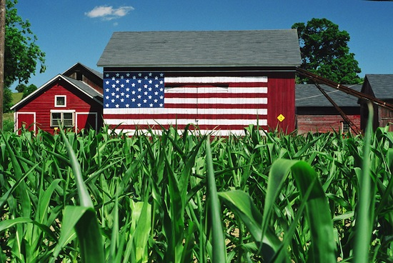 Robert Carley Barn & Corn Field, NY, 2002. Color photograph, 16 x 20 in.©Robert Carley.