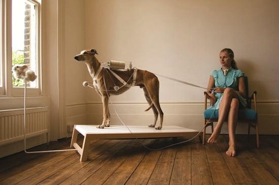 Revital Cohen & Tuur Van Balen, Life Support, 2008.