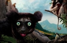 Island of Lemurs: Madagascar at the National Museum of Natural History