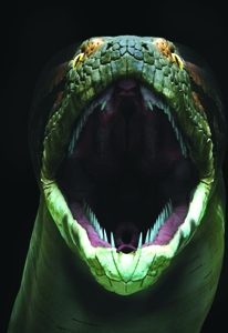Indulge in Chocolate: The Exhibition, a Mouth-Watering Experience Open Oct. 11 at the Academy of Natural Sciences