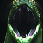 Titanoboa, the Biggest Snake That Ever Roamed the Earth See it in Philadelphia Starting Feb. 14, 2015