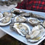 OysterFest at the Chesapeake Bay Maritime Museum in St. Michaels is October 31