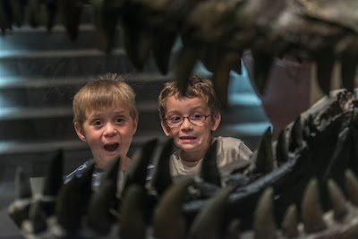 Cincinnati Museum Center celebrates Fossil Fest