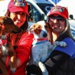 Wings of Rescue Valentine Airlift of Dogs and Cats Descends on Museum of Flight
