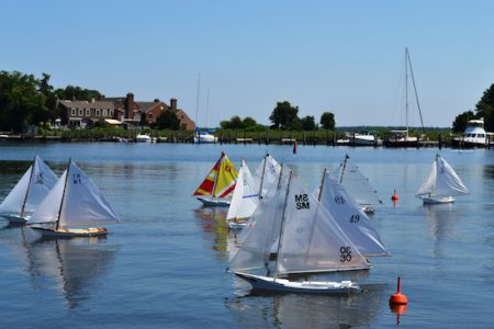 Model skipjack races at the Chesapeake Bay Maritime Museum in St. Michaels