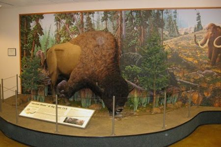 Big Bone Lick completes mammoth 3 year revitalization of visitor center at Cincinnati Museum Center