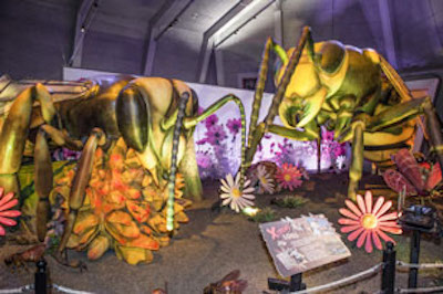 Giant, Moving Insects Invade Philly When  Xtreme Bugs Opens May 26 at the Academy of Natural Sciences