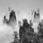 Utah Museum of Fine Arts announce salt 14: Yang Yongliang