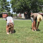 Chesapeake Bay Maritime Museum to host waterfront yoga class