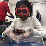 Register now for Cincinnati Museum Center Museum Camps