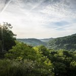 Cincinnati Museum Center and The Nature Conservancy open photography exhibition