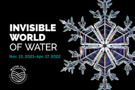 Discover the Hidden Beauty and Science of the Invisible World of Water Opening Nov. 13 at the Academy of Natural Sciences